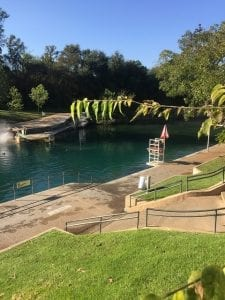 lap swimming in Austin Barton Springs